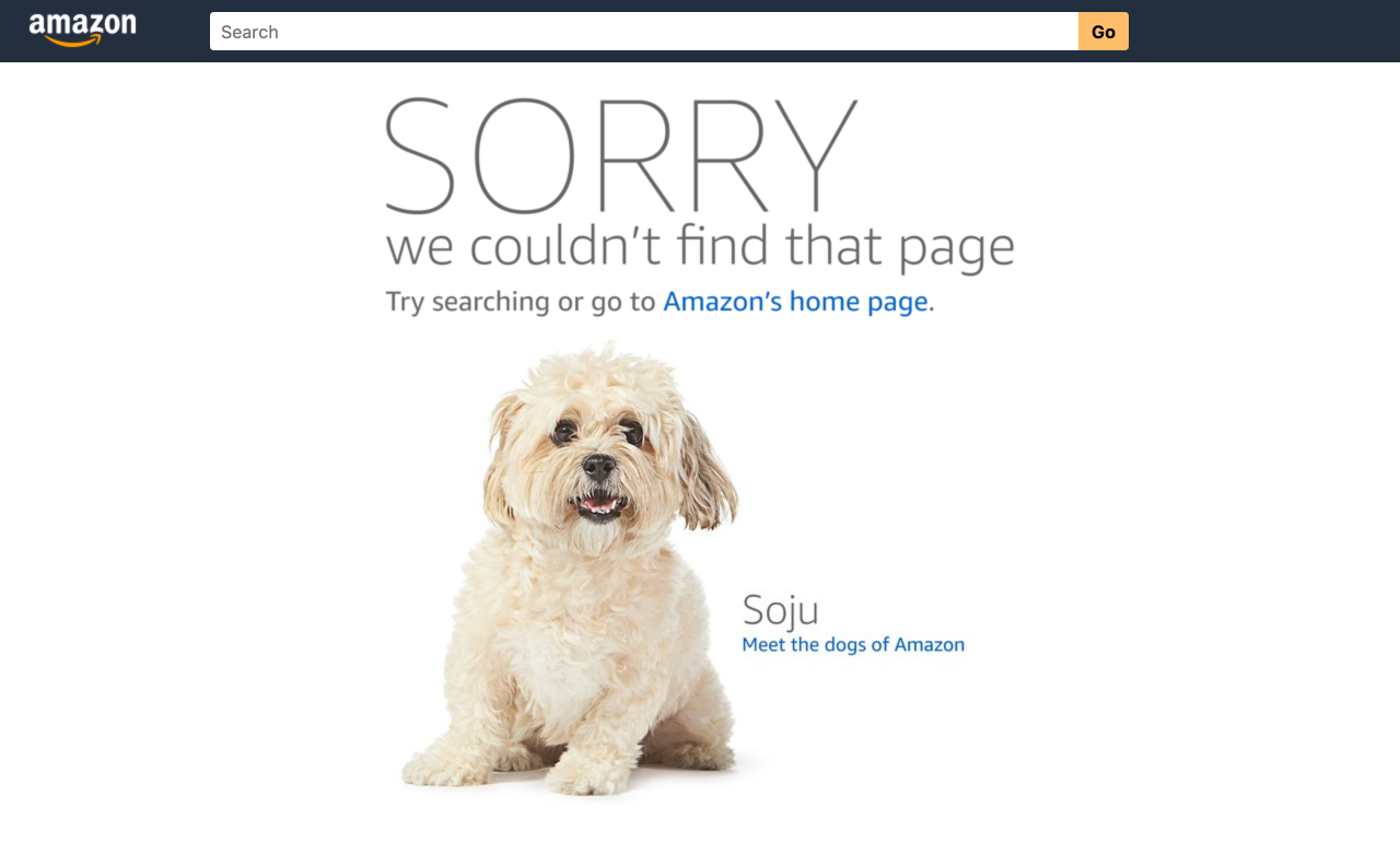 Amazon 404 Page - 7 Creative 404 Pages & The Best Practices For Yours